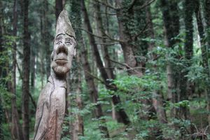 Tree with face in forest