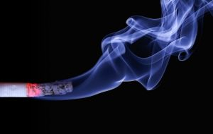 cigarette with plume of smoke