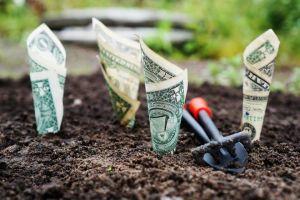 Papieren geld in grond gestoken