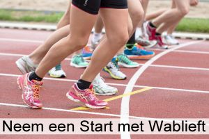 Take a Start with Wablieft