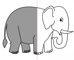 Drawing of elephant
