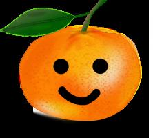 Mandarin orange with face
